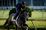 MAY13, 2021: Spritz gallops in preparation for the Black Eyed Susan Stakes at Pimlico Race Course in Baltimore, Maryland on May 13, 2021. EversEclipse Sportswire/CSM