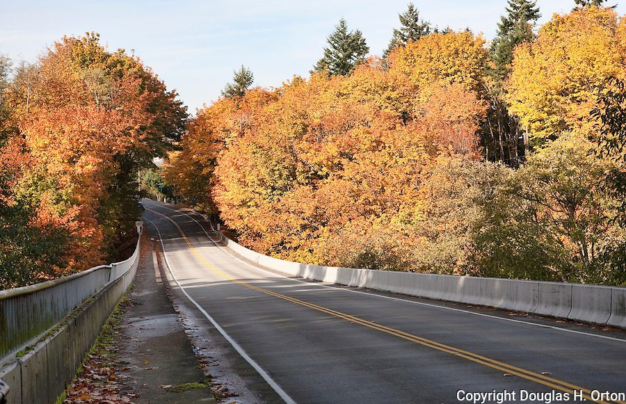 Washington State's SR 509 crosses Dash Point State Park between Seattle and Tacoma.