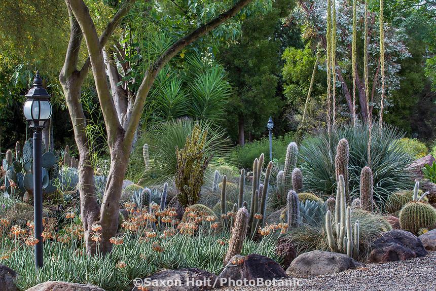 Taft Gardens; Ojai, California
