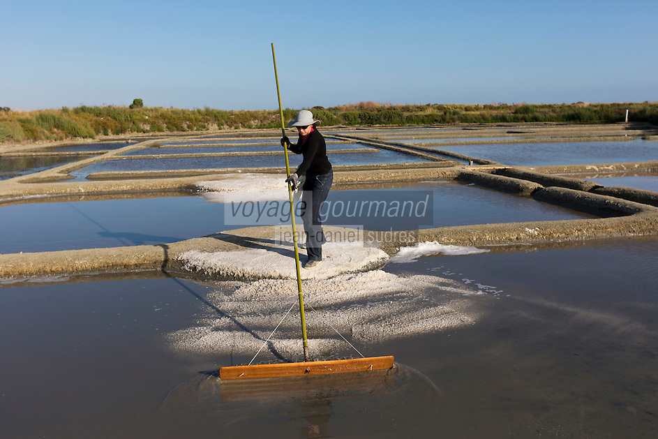Europe/France/Pays de la Loire/44/Loire Atlantique/Guérande: Les marais salants de Guérande  - Récolte du Sel - AUTO N°: 2012-428