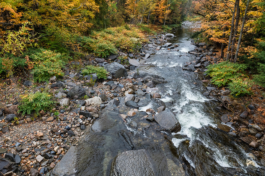 The New Haven River runs through autumn landscape, Bristol, Vermont, USA. .