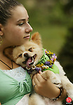 """BETHLEHEM,  CT 17 September 2005 -091705BZ11-  Maria Hatzikostas, 13, of Bethlehem, hugs her pomeranian """"Emilio""""<br /> during the 4th annual Dog Show at the Bellamy-Ferriday House and Garden Saturday afternoon. <br /> <br />  Jamison C. Bazinet / Republican-American"""