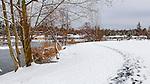 Rare snow and ice coats Lake Lorene in Federal Way, Washington, USA. People in Treasure Island Park roll snowballs.