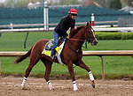LOUISVILLE, KY -APR 25: Kentucky Derby hopeful Promises Fulfilled trains for the Kentucky Derby at Churchill Downs, Louisville, Kentucky. (Photo by Mary M. Meek/Eclipse Sportswire/Getty Images)