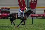 MAY 31 ,2015: Duramente,ridden by Mirco Demuro,wins the Japanese Derby at Tokyo in Tokyo,Japan. Kazushi Ishida/ESW/CSM