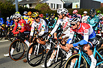 Danish Champion Kasper Asgreen (DEN) Deceuninck-Quick Step, Olympic Champion Greg Van Avermaet and Oliver Naesen (BEL) AG2R Citroen Team and Dutch Champion Mathieu Van Der Poel (NED) Alpecin Fenix at the start of the 73rd edition of Kuurne-Brussel-Kuurne 2021 running 197km from Kuurne to Kuurne, Belgium. 28th February 2021  <br /> Picture: Serge Waldbillig | Cyclefile<br /> <br /> All photos usage must carry mandatory copyright credit (© Cyclefile | Serge Waldbillig)