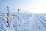 Rural winter scene with a snow covered road and hoarfrost on a fence