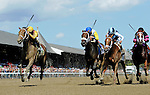 SARATOGA SPRINGS - AUGUST 27: Cavorting #5, ridden by Javier Castellano, wins the Personal Ensign Stakes on Travers Stakes Day at Saratoga Race Course on August 27, 2016 in Saratoga Springs, New York. (Photo by Bob Mayberger/Eclipse Sportswire/Getty Images)