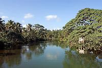 Dominikanische Republik, Flussmündung bei Miches im Nord-Osten