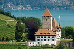 CHE, Schweiz, Kanton Bern, Berner Oberland, Spiez: Schloss Spiez und Weinberge am Thunersee   CHE, Switzerland, Bern Canton, Bernese Oberland, Spiez: castle Spiez and vineyards at Lake Thun