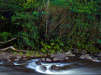 Kolekole Stream flows into the ocean along the Hamakua Coast of the Big Island of Hawai'i.