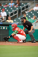 "Palm Beach Cardinals catcher Jose Godoy (27) awaits the pitch in front of home plate umpire Brandon Mooney during a game against the Charlotte Stone Crabs on July 22, 2017 at Roger Dean Stadium in Palm Beach, Florida.  The Cardinals wore special ""Ugly Sweater"" jerseys for Christmas in July.  Charlotte defeated Palm Beach 5-2.  (Mike Janes/Four Seam Images)"