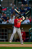 Worcester Red Sox Chad De La Guerra (13) bats during a game against the Rochester Red Wings on September 2, 2021 at Frontier Field in Rochester, New York.  (Mike Janes/Four Seam Images)