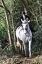11/01/17<br />