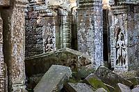 Cambodia.  Ta Prohm Temple Ruins, 12th-13th. Century.  Devatas (Deities) among the Ruins.