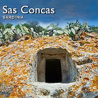 Domus de Janus Tomb Sas Concas necropolis - Pictures & Images -