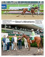 Steve's Adventures winning at Delaware Park on 6/3/13