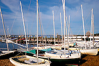 Small sailboats docked in Chatham Harbor. Cape Cod, Massachusetts.
