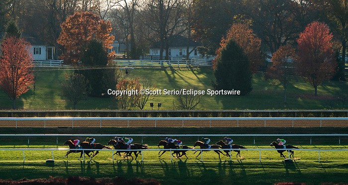 November 7, 2020 : Horses race during the Longines Turf on Breeders' Cup Championship Saturday at Keeneland Race Course in Lexington, Kentucky on November 7, 2020. Scott Serio/Breeders' Cup/Eclipse Sportswire/CSM