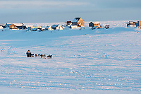 Ketil Reitan runs on the trail past fish camps heading toward the finish at Nome on Wednesday March 14th during the 2018 Iditarod Sled Dog Race.  <br /> <br /> Photo by Jeff Schultz/SchultzPhoto.com  (C) 2018  ALL RIGHTS RESERVED