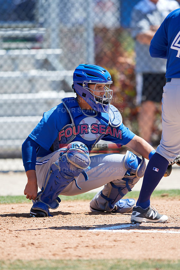 Toronto Blue Jays catcher Max Pentecost (8) during a Minor League Spring Training Intrasquad game on March 14, 2018 at Englebert Complex in Dunedin, Florida.  (Mike Janes/Four Seam Images)