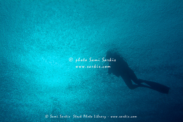 Scuba diver swimming near the water's surface while it is heavily raining creating air bubbles, Madivaru, Rasdhoo Atoll, Maldives.