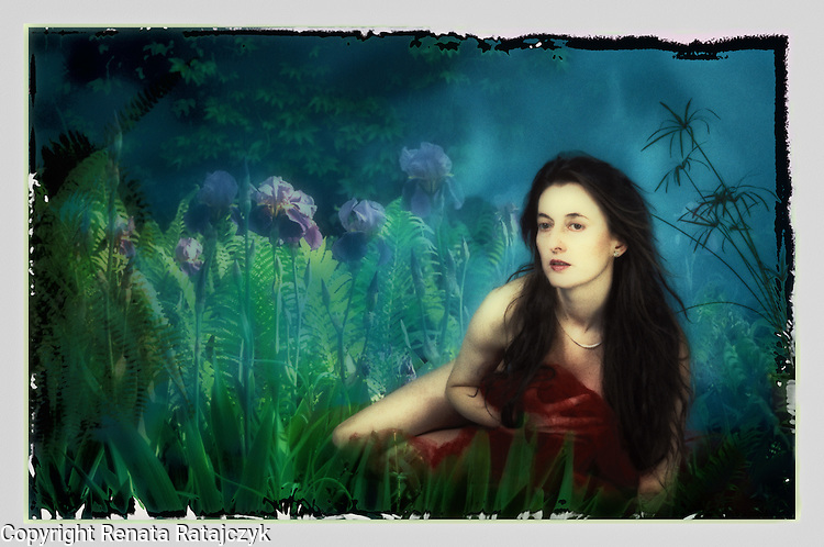 Misty Morning - a mysterious woman in the field of flowers. it could be a fairy.