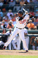 Baltimore Orioles outfielder Julio Borbon (41) during a spring training game against the Boston Red Sox on March 8, 2014 at Ed Smith Stadium in Sarasota, Florida.  Baltimore defeated Boston 7-3.  (Mike Janes/Four Seam Images)
