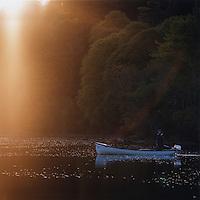 Fisherman on a freshwater lake, County Galway, Ireland