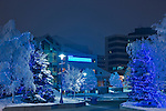 Photo of the Christmas tree and lights, Anchorage's Town Square, twilight, winter, Southcentral Alaska, USA.