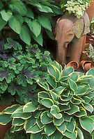 Hosta foliage plant with yellow cream edge, green blue hosta, Geranium Samonot with marked black purple and green leaves, elephant terracotta statue garden animal ornament, pots, licorice plant, make a charming scene of green perennial plants for the shade garden