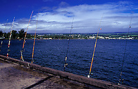 Fishing poles at Hilo warf with view of town, Big Island of Hawaii