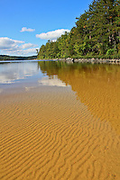 """""""Sand Ripples""""<br /> <br /> Wave action produces a mosaic of sand ripples at a campsite beach on Sturgeon Lake in Quetico Provincial Park, Canada."""