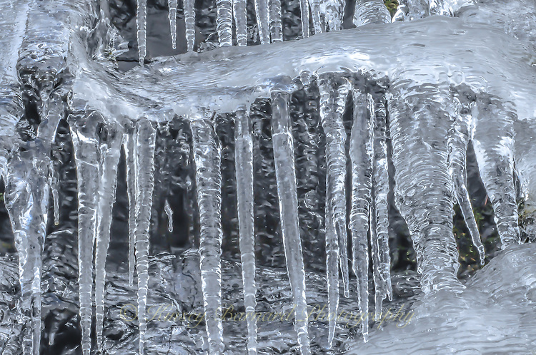 """""""SERPENTINE""""<br /> <br /> Large icicles dropping from a serpentine arm of ice."""