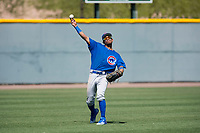 Chicago Cubs left fielder Fernando Kelli (28) during a Minor League Spring Training game against the Oakland Athletics at Sloan Park on March 19, 2018 in Mesa, Arizona. (Zachary Lucy/Four Seam Images)