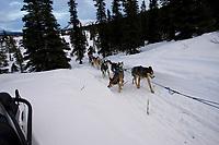 Charlie Boulding on Trail Leaving Rainy Pass Chkpt AK 2005 Iditarod