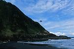 Beach nearby Delices village<br /> Recolte de noix de cocos sur la cote sud est de l'ile vers le village de Delices.