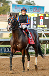 """DEL MAR, CA  AUGUST 28 : Drayden Van Dyke can barely restrain a smile after piloting #1 Ginobili to win the Pat O'Brien Stakes (Grade ll) Breeders Cup """"Win and You're In"""" Dirt Mile Division on August 28, 2021 at Del Mar Thoroughbred Club in Del Mar, CA.(Photo by Casey Phillips/Eclipse Sportswire/CSM)"""