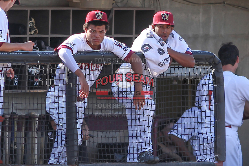 Wisconsin Timber Rattlers outfielder Elvis Rubio (17) and infielder Francisco Castillo (23) look on from the dugout during a Midwest League game against the Quad Cities River Bandits on July 17th, 2015 at Fox Cities Stadium in Appleton, Wisconsin. Quad Cities defeated Wisconsin 4-2. (Brad Krause/Four Seam Images)