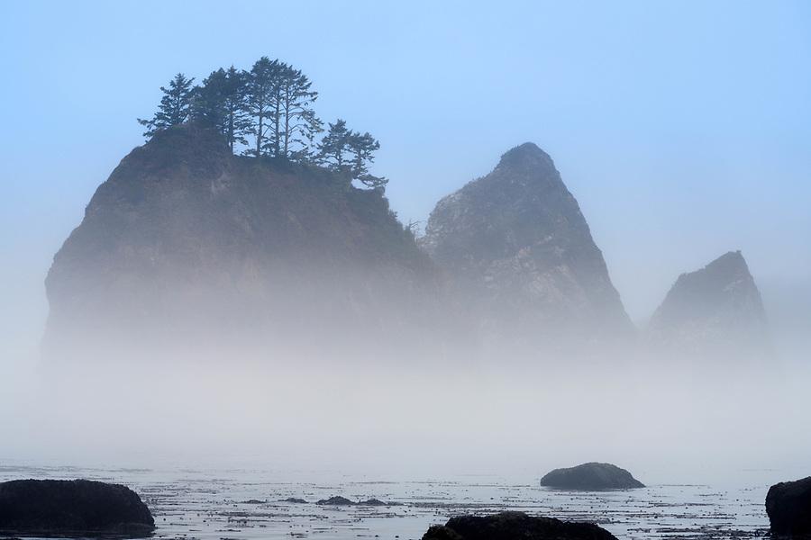 Giants Graveyard sea stack on Washington Coast in fog, near Strawberry Point, Olympic National Park, Washington, USA