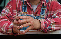 A deer hunter's bloodied hands after field dressing his prey.<br />