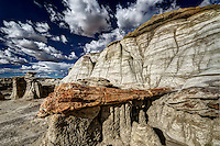 A petrified tree exposed by erosion of the surrounding sand and mudstone near Alamo Wash in the Bisti Wilderness of northwest New Mexico.