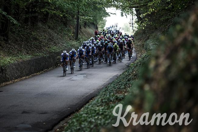 Team Deceuninck Quick Step leading the chase in the peloton. <br /> <br /> Dwars Door Het Hageland 2020<br /> One Day Race: Aarschot – Diest 180km (UCI 1.1)<br /> Bingoal Cycling Cup 2020