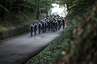 Team Deceuninck Quick Step leading the chase in the peloton. <br /> <br /> Dwars Door Het Hageland 2020<br /> One Day Race: Aarschot – Diest 180km (UCI 1.1)<br /> Bingoal Cycling Cup 2020