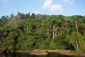 Marenco, Osa Peninsula, Costa Rica. Idyllic lagoon on the beach at Rio Claro with tall rainforest behind.