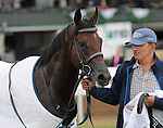 October 5, 2014:  Lawn Ranger and jockey Chris Landeros win the Dixiana Bourbon at Keeneland for owner Turf Stable and trainer Kenneth McPeek .Jessica Morgan/ESW/CSM