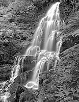 M00207M.tiff   Fairy Falls. Columbia River Gorge National Scenic Area. Oregon