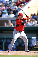 St. Louis Cardinals first baseman Matt Adams (32) during a spring training game against the Detroit Tigers on March 3, 2014 at Joker Marchant Stadium in Lakeland, Florida.  Detroit defeated St. Louis 8-5.  (Mike Janes/Four Seam Images)