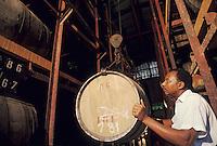 France/DOM/Martinique/Macouba/Bellevue/Distilerie J.M.: Distillerie de fonds Préville - Les chais [Non destiné à un usage publicitaire - Not intended for an advertising use]