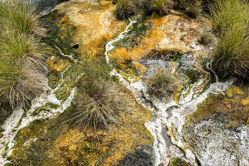 Waimangu Volcanic Valley: Mineral deposits left by hot spring